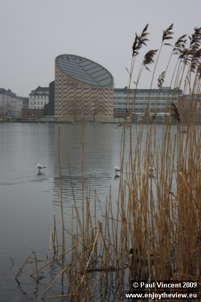 Seagulls stand on the ice of the Saint Jørgens lake. Behind them, the Tycho Brahe Planetarium.
