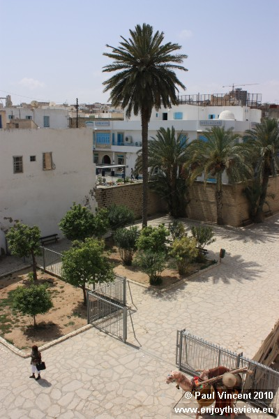 Despite the climate, palm trees thrive in Sousse.